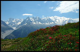 Summer in the Chamonix valley
